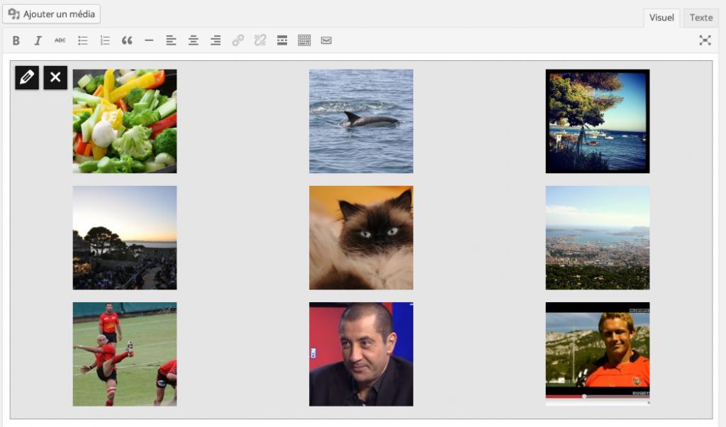 Prévisualisation de galerie d'images sous WordPress 3.9